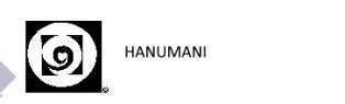 hanumani.de